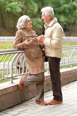 Beautiful lderly couple walking in the autumn park