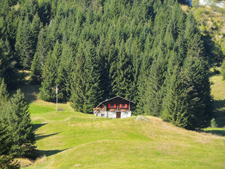 Traditional Swiss mountain landscape. Green area fall season with wood