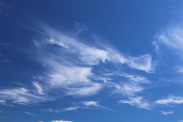 Clouds on a blue sky in harvest