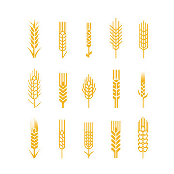 Spikes vector icon Design Elements Logo Bread Bakery Beer