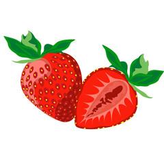 Ripe juicy berries of strawberry. Vector image.