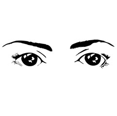 two beatiful isolated black eyes with eyebrows of female on the rhite background
