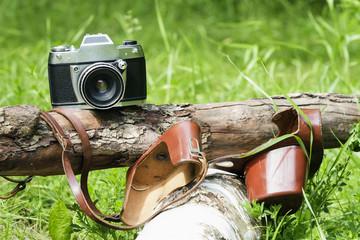 Old camera on nature, tree.