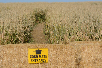 Autumn Halloween Corn Maze with entrance sign posted on hay bales