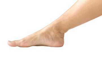 Bare male or female foot-2