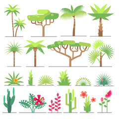 Different types of tropical plants, trees, flowers flat vector collection