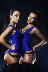 Two sexy woman posing in lingerie