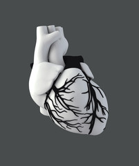 Illustraton Anatomy of Human Heart - Isolated on gray