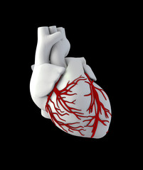 Illustraton Anatomy of Human Heart - Isolated on black