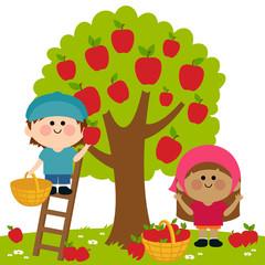 Kids harvesting apples
