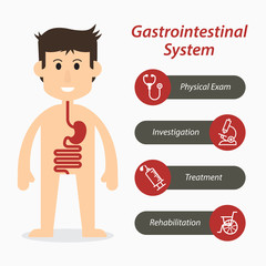 Gastrointestinal system and medical line icon