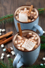 Poster Chocolate Two Cups of hot Chocolate drink with Marshmallows and cinnamon on dark wooden background. Winter time. Holiday concept, Selective focus