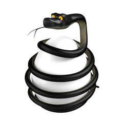 Black snake around the white egg.