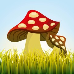 cute drawing fairy mushroom vector illustration design