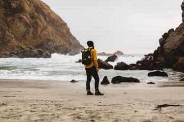 Hiker enjoying view on beach, Big Sur, California, USA