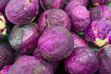 Fresh Purple Cabbage