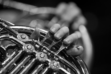 Photo sur Aluminium Musique Musician's fingers playing the french horn in black and white