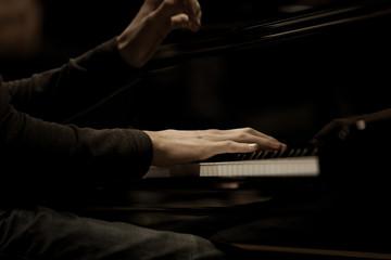 Wall Mural - Hands musician playing the piano closeup