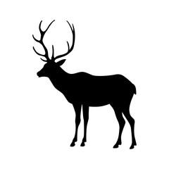 deer vector illustration silhouette black