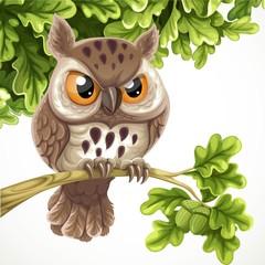 Cute cartoon owl sitting on a oak branch under a crone of leaves
