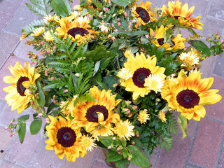 Or Yehuda the bouquet of sunflowers 2010