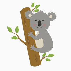 cute cartoon koala