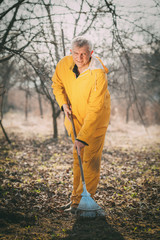 Cleaning Orchard With A Rake