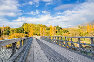 The Historic Bridge over Shotover River in Arrowtown, New Zealand.