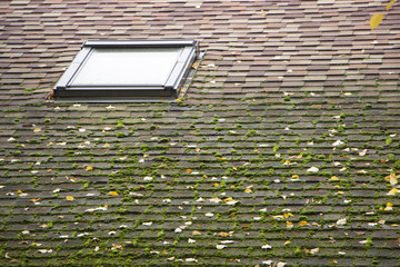 Beautiful roof window and skylight on shingles roof