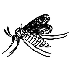 Mosquito icon. Insect animal and infestation theme. Isolated design. Vector illustration