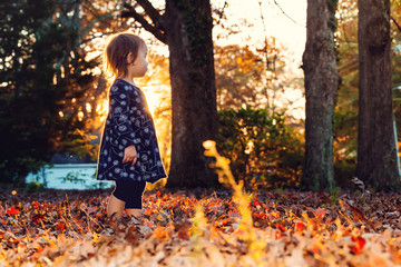 Toddler girl standing outside in the fall leaves at sunset
