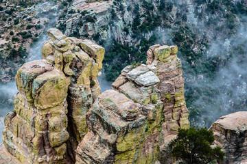 Fog lingers in a steep canyon in the Santa Catalina Mountains near Tucson, Arizona.