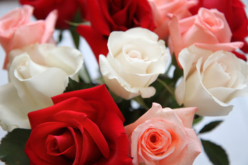 Bouquet of Pink, Red and White Roses Close Up