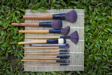 Brush for Women