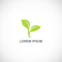 seed plant logo