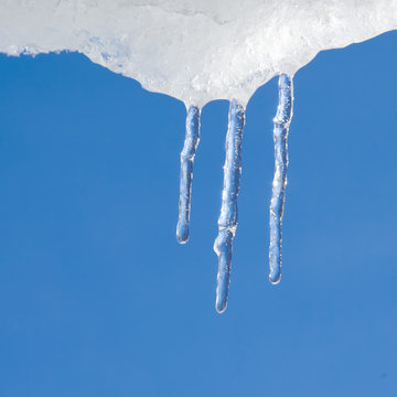 icicles (14)