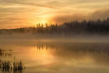 lake sunrise fog golden