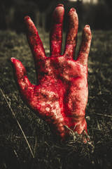 Blood Stained Hand Coming Out Of The Ground At Night