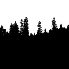 Panoramic view of the forest. Tree Silhouette