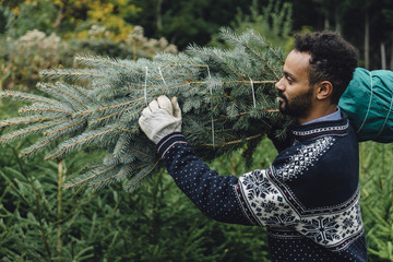 Young adult man choosing a christmas tree at the farm