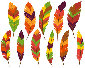 Thanksgiving or Fall Colored Turkey Feathers