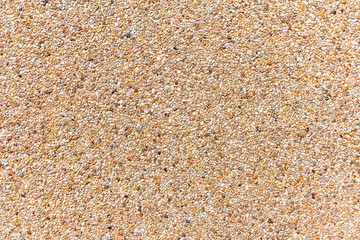 Wall of small sand stone texture. Pebbles and sand wall texture.