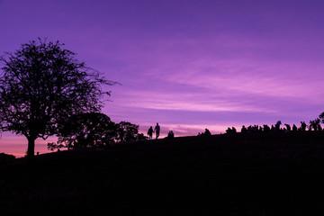 Silhouette of Primrose Hill in London