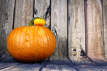 A large Orange Pumpkin.