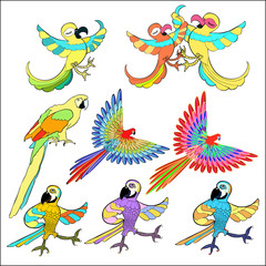 set of golden Caribbean parrot dancing. vector illustration