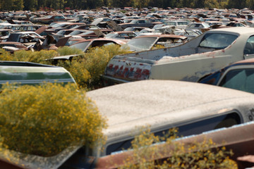 Rusty scrapped cars at a dump