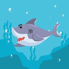 shark swimming character vector illustration design