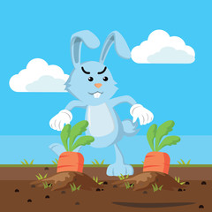bunny stealing carrot vector illustration design