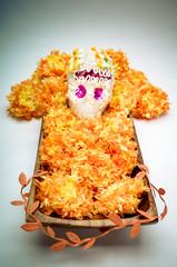 "Sugar skull altar for ""dia de los muertos"" celebration"