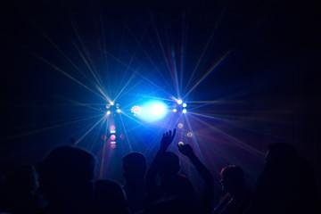 people having fun in a disco. blur effect